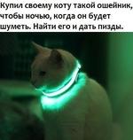 Купил своему коту такой ошейник, чтобы ночью, когда он будет шуметь. Найти его и дать пизды.