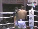 Смешной Тайский бокс,Animals,,