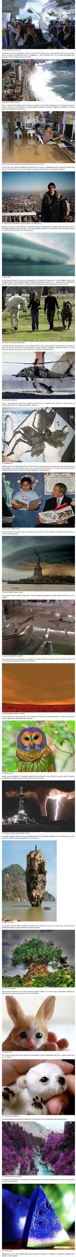 1. Рейс компании Air France 447. Утверждалось, чтобы эта фотография с рейса Air France 447 была сделана как раз перед роковым моментом, когда самолет рухнул на Землю, но в действительности это изображение - кадр из сериала «Lost». Тем не менее, фотография стала вирусной, и многие поверили в реальн
