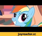 """Rainbow Dash Is Excited,Entertainment,,And also multiplying Ponies do that sometimes Usually accidentally Song is a snippet of Weird Al's """"Alternative Polka"""", specifically 1:14 in: https://www.youtube.com/watch?v=C0g_LYOFJ1I This snippet is based on this song:"""