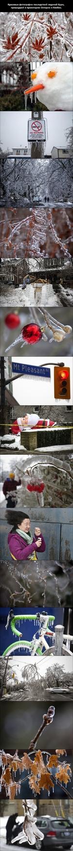 Красивые фотографии последствий ледяной бури, прошедшей в провинциях Онтарио и Квебек. но змошые МГТМт ВМ£ТЙС5 (30 «ЕТ* О* **Ч>ЛГЛ АСТАТУ АЯЕА