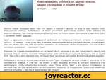 Новозеландец отбился от акулы ножом, зашил свои раны и пошел в бар 28 01 2014 14:36 Житель Новой Зеландии мало того, что выжил в схватке с акулой, но еще и смог оказать себе медицинскую помощь, выбравшись на берег 24-летний врач-стажер Джеймс Грант отбился от морской хищницы при помощи ножа, а на