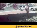 Отважная кошка спасла жизнь четырехлетнему ребенку,People,,Инцидент, чуть было не ставший настоящей трагедией, зафиксировали камеры видеонаблюдения в городе Бэйкерсфилд.  Четырехлетний ребенок катался на велосипеде у себя во дворе, когда его заметил соседский пес. Собака сразу же подбежала к малышу,