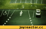 парковка для женщин