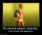 Не сиськи красят девушку А нет сиськи, всё правильно DEMOTIVATORS.RU