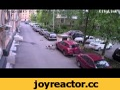 Собака грызет автомобиль,People & Blogs,,http://vk.com/ptzlive