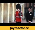 Why you don't harass the Queen's Guard,Sports,Windsor Castle (Tourist Attraction),Queen's Guard (Organization),fail,what a stupid jerk.