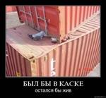 БЫЛ БЫ В КАСКЕ остался бы жив, demotivators.ru