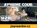 Лучшее в Coub #20 Повторяй за котом,Comedy,jokes,humor,funny quotes,joke,comedy jokes,sardar jokes,funny or die,funny images,funny presents,youtube,youtube.coom,приколы,юмор приколы,приколы юмор,юмор,2015,приколы онлайн,видео,coub,looping youtube,смотреть приколы,нарезка приколов,Приколы за неделю,С