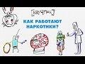 Как работают наркотики? — Научпок,Science & Technology,мозг,Physics,(Idea),Научпок,анимация,мультфильм,наука,Technology,(Professional,Field),Наркотики,Drugs,Последствия употребоения наркотиков,Narcotic (Medical Treatment),Health (Industry),Смотри Научпок на Карамбе! http://carambatv.ru/cartoons/scie