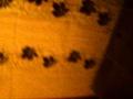 Разоблачение поста 2345960,People & Blogs,,Пост http://joy.reactor.cc/post/2345960