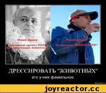 Дрессировать животных это у них фамильное. demotlvatlon.ru