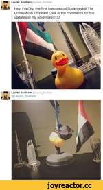 Lauren Southern @Lauren_Southem