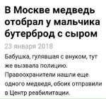 В Москве медведь отобрал у мальчика бутерброд с сыром 23 января 2018 Бабушка, гулявшая с внуком, тут же вызвала полицию. Правоохранители нашли еще одного медведя, обоих отправили в Центр реабилитации.