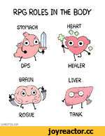 RPG ROLES IN THE BODY STOHftCH ROGUE HEfiRT HEHLER LIVER TftNK SHENCOniX.COn
