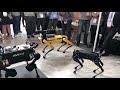 Состязание роботов на IROS 2018,Entertainment,,Производители роботов Boston Dynamics, ANYbotics и Unitree устроили на выставке IROS 2018 в Мадриде соревнования по функциональности.