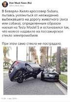 Elon Musk News (Ru) @Elon_Musk_News В Беверли-Хиллз кроссовер Subaru, пытаясь уклониться от неожиданно выбежавшего на дорогу животного (лиса или собака), определённым образом наехал на Tesla Model S и остановился так, что колесо надавило на пассажирское стекло электромобиля. При этом само стекло