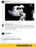 Elon Musk 9 @elonmusk • lh SpaceX Crew Dragon has docked with International @Space_Station Q 647 T2 3.5K О 21K В Katya Pavlushchenko @katlinegrey • 22m v I don't think #Rogozin or #Roscosmos will send you congratulations, they never do, and that's upsetting. So please let me assure you that a