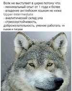 Волк не выступает в цирке потому что: - минимальный опыт от 1 года и более - владение английским языком не ниже Upper-Intermediate - аналитический склад ума - стрессоустойчивость, доброжелательность, умение работать со