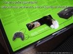 Создай свою кото матрицу на kotomatrix.ru