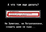А что там еще делать? Ни Эрмитажа, ни Петропавловки, сходить даже не куда...