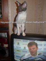 kotomatrix-.ru МЙ21 н ООГ/