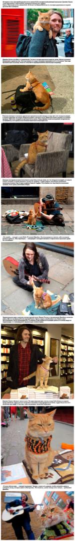 История о том, как приблудный кот по имени Боб и лондонский уличный музыкант Джеймс Боуэн стали друзьями и партнерами, покорила множество сердец. Книга «Уличный кот по имени Боб» (A Street Cat Named Bob) шесть месяцев держалась в первой десятке бестселлеров. Джеймс Боуэн погибал от наркотиков. Се