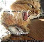 а шелл Создай свою; кото матрицу на kotomatrix-.ru мщухэ сеоэ'йрыс