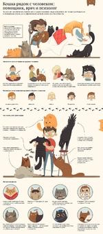 Кошка рядом с человеком: ру помощник, врач и психолог За долгие тысячелетия совместного существования люди научились не только разбираться в поведении кошек, но и эффективно использовать их способности Фелинотерапия (кошка по-латыни «felis») терапевтический метод, при котором лечение некоторых