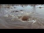 Dvietes plūdos atvars/ Чудовищный водоворот / Amazing monstrous whirlpool,Entertainment,,Atvars apēd visu ledu un pārējo, kas peld pa ūdens virsmu!!! Video uzņēmis Guntis Astičs, Dvietes pagastā, Ilūkstes novadā 18.04.2013. Dviete, Latvia All Rights Reserved, ©
