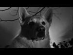 """GOJIRA - l'enfant sauvage - Official Video,Music,,© 2012 WMG. BUY """"L'ENFANT SAUVAGE"""" ON ITUNES http://smarturl.it/q1zmca Réalisation: Anne Deguehegny  Nous sommes fier de vous présenter notre tout premier clip de L'enfant sauvage. Après avoir collaboré avec Anne Deguehegny pour le visuel live, nous"""