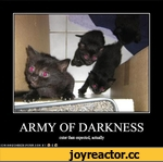 ARMY OF DARKNESS cuter than expected, actually ICAr-4HASCHEE2BURGER.COM